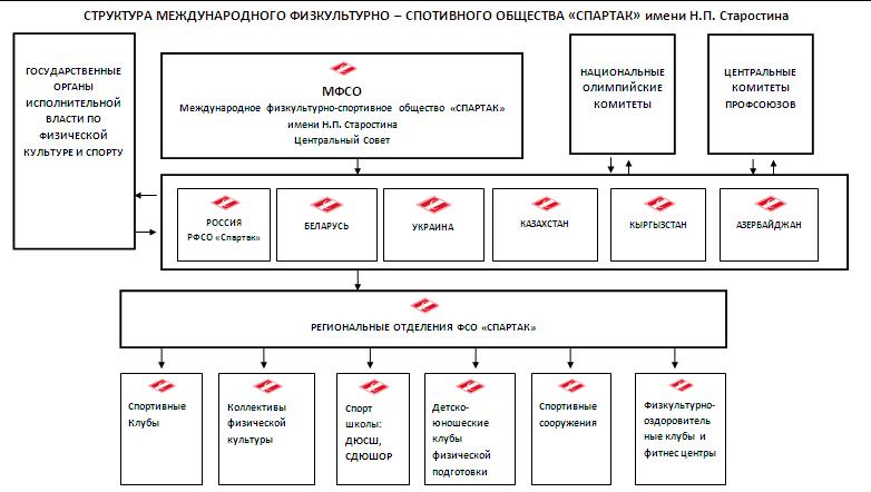 структура клуба спартак москва